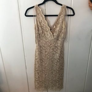 Lacy neutral v neck dress
